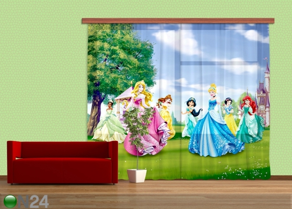 Fotokardin Disney Princess ED-87037