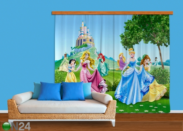 Pimendav fotokardin Disney Princess 280x245 cm ED-87488