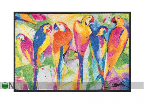 Vaip Parrots party 50x75 cm A5-87616