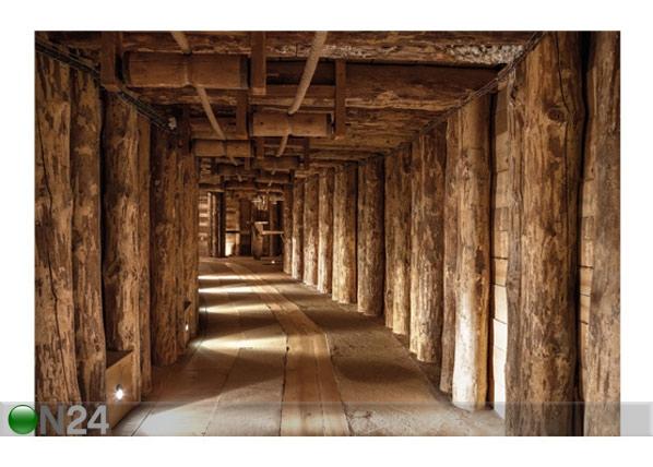Fototapeet Salt mine 400x280 cm ED-88100