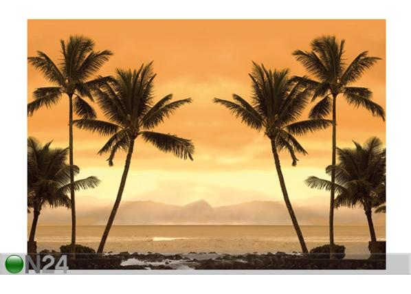 Fototapeet Caribbean beach 400x280 cm ED-88111