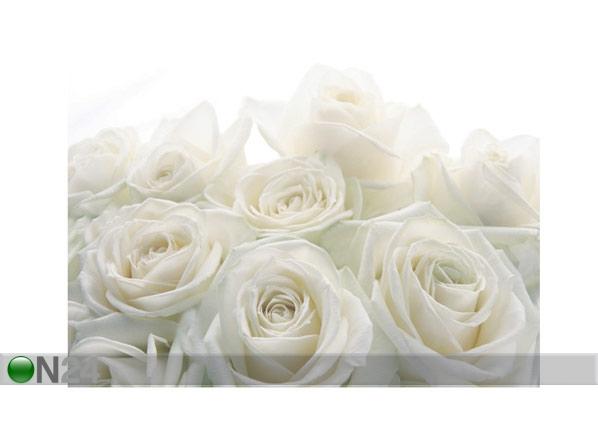 Fototapeet Wedding roses 400x280 cm ED-88124
