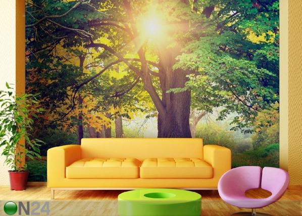 Fliis-fototapeet Tree 360x270 cm ED-90602