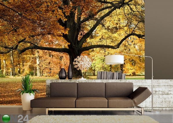 Fliis-fototapeet Oak tree 360x270 cm ED-90604