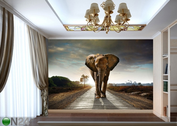 Fliis-fototapeet Big elephant 360x270 cm ED-90700