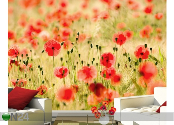 Fototapeet Dream of poppies 400x280 cm ED-92508