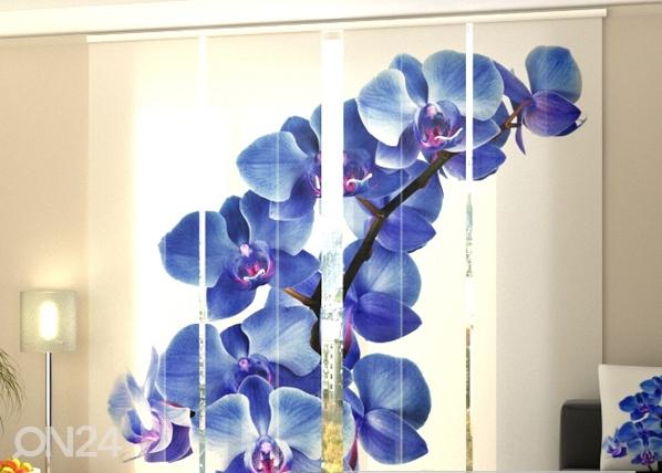 Läbipaistev paneelkardin Blue Orchids 240x240 cm ED-97574
