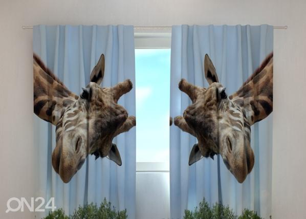 Pimendav kardin Giraff 240x220 cm ED-98020