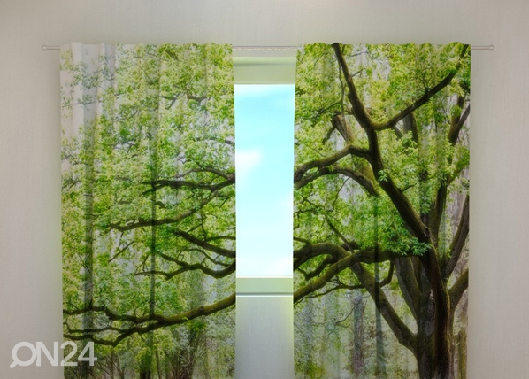 Poolpimendav kardin Green tree 240x220 cm ED-98150