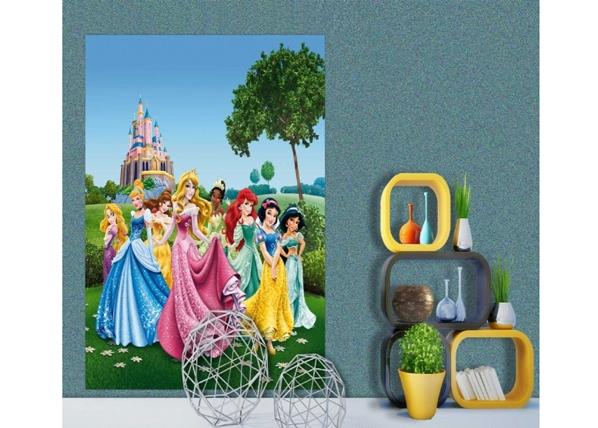Fliis-fototapeet Disney Princess 180x202 cm ED-99085