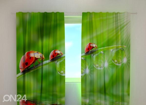 Pimendav kardin Ladybirds 240x220 cm ED-99308