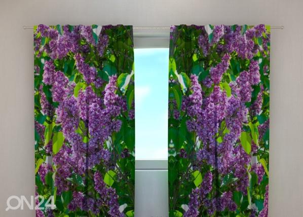 Läbipaistev kardin Lilac 1, 240x220 cm ED-99340