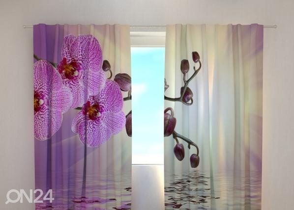 Poolpimendav kardin Lilaceous orchid 240x220 cm ED-99356