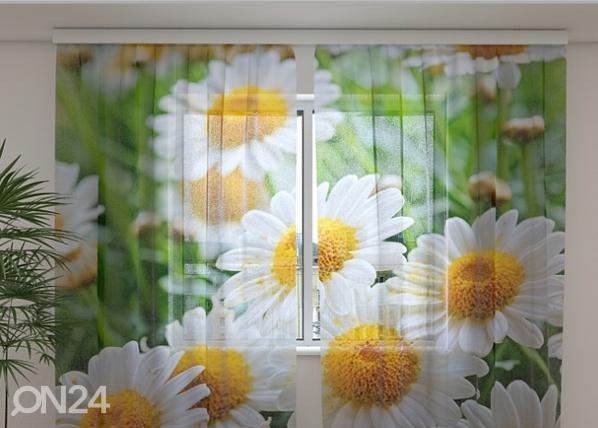 Šifoon-fotokardin White camomiles 240x220 cm ED-99903