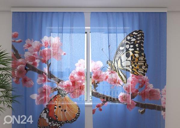 Šifoon-fotokardin Two Butterflies 240x220 cm ED-99943