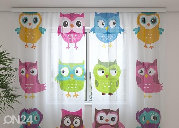 Šifoon-fotokardin Lovely owl 240x220 cm ED-99990